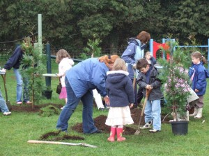 community engagement in landscape design and planting