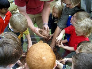 involving school community in school grounds design and build early years design