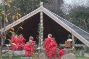 Timber Shelter for Forest Schools Area