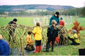 Weobley Willow Structure