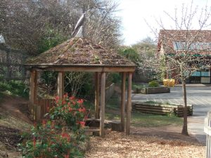outdoor learning environments and natural play