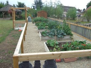 school grounds and outdoor learning environments