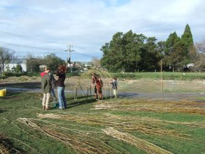 willow work in school grounds design and build