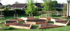 school grounds design and build landscape consultancy