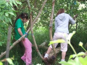 natural playscapes and consultancy