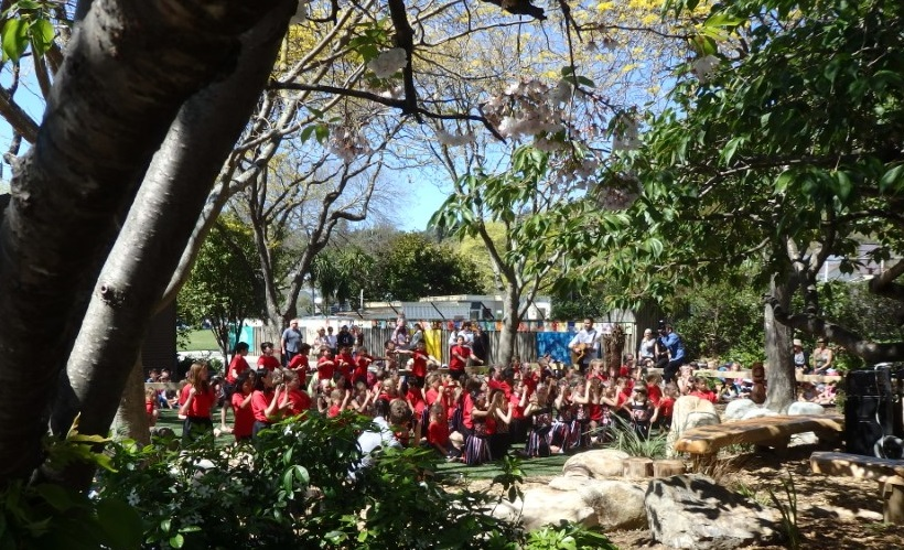 Multi functional outdoor learning landscape for schools